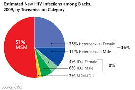 HIV Facts Estimated New HIV Infections Among Blacks 2009 MD Whitest Medical Institute